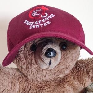 HwHTC Teddy